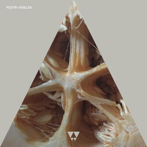 Piotr-Heslin album artwork